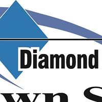 Diamond Plaza Pawn logo