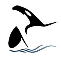 Island Adventures Whale Watching logo