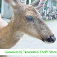 Consignment Treasures logo