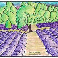 Pelindaba Lavender Farm logo