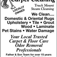 Capitol Cleaning & Dye logo