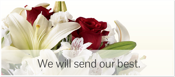Sheely's Floral & Gifts logo