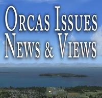 Orcas Electric logo