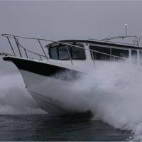 BAMF Boats logo