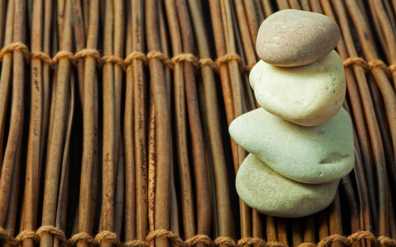 Therapy & Wellness Massage logo