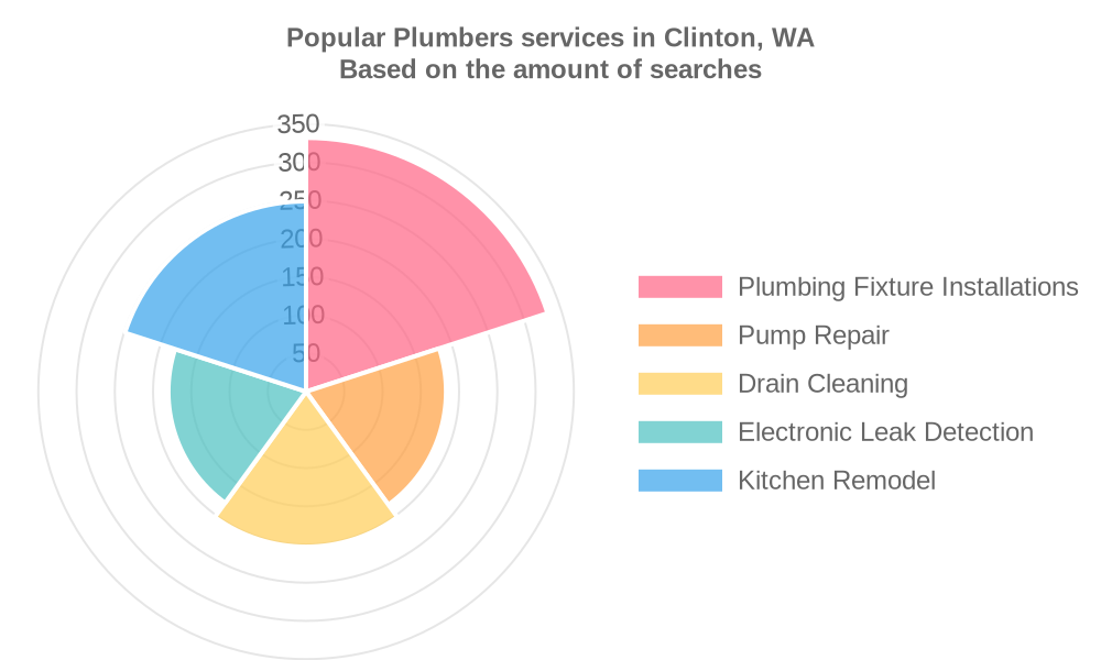Popular services provided by plumbers in Clinton, WA