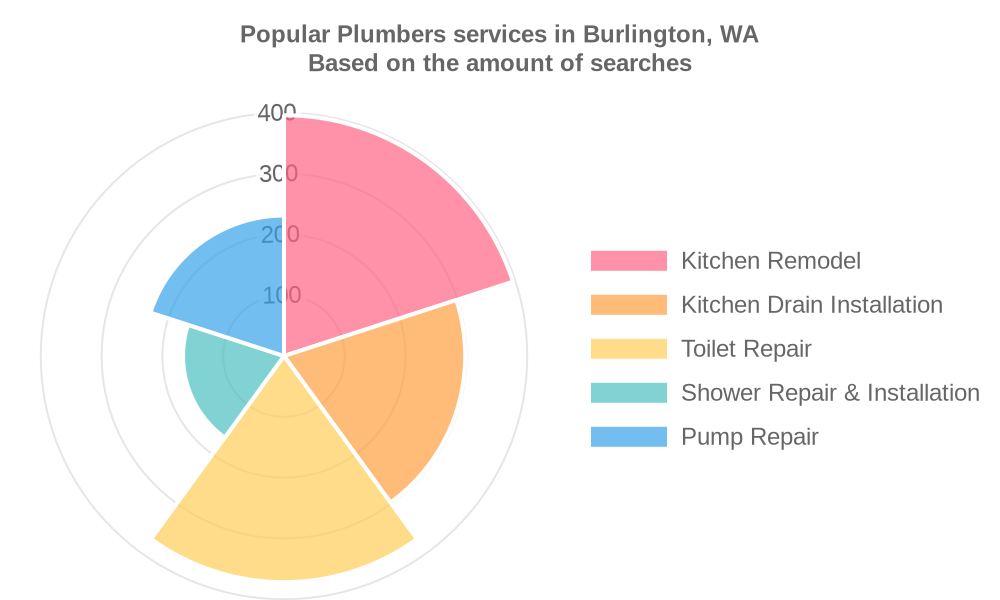 Popular services provided by plumbers in Burlington, WA