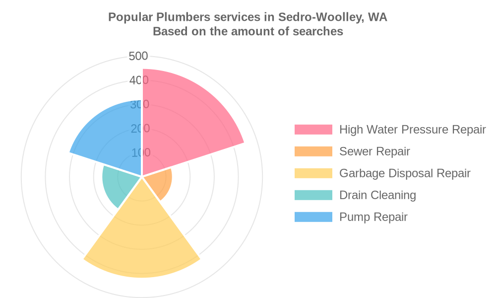 Popular services provided by plumbers in Sedro-Woolley, WA