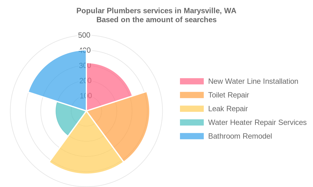 Popular services provided by plumbers in Marysville, WA