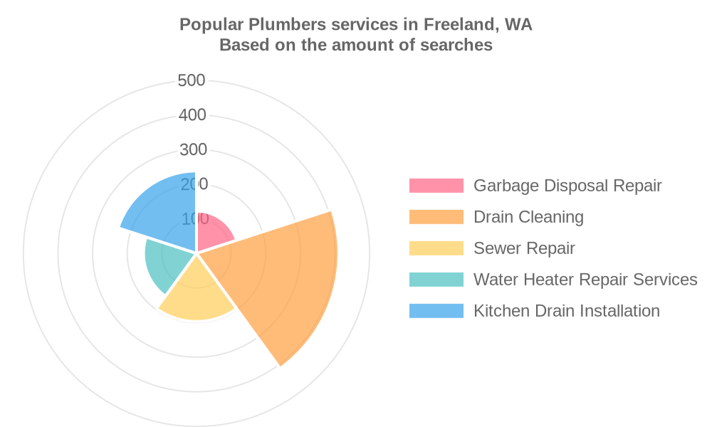 Popular services provided by plumbers in Freeland, WA