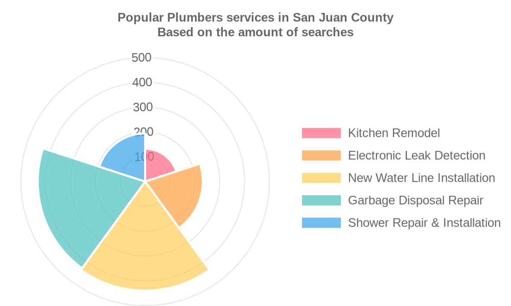 Popular services provided by plumbers in San Juan County