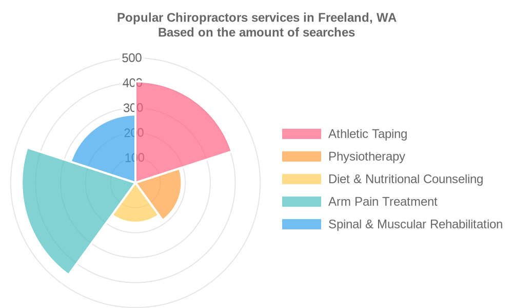 Popular services provided by chiropractors in Freeland, WA
